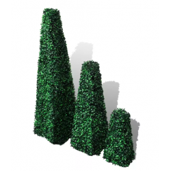 Buchsbaum-Pyramide-mieten-berlin-mietmöbel-deko-equipment