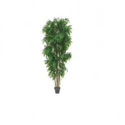 Bambus-Baum-mieten-Berlin-Equipment-Veranstaltung-Ausstattung